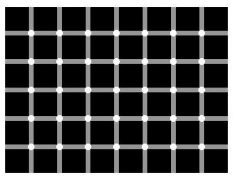 Optical Illusions (17)