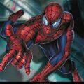 Spider Man (35)