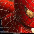 Spider Man (7)