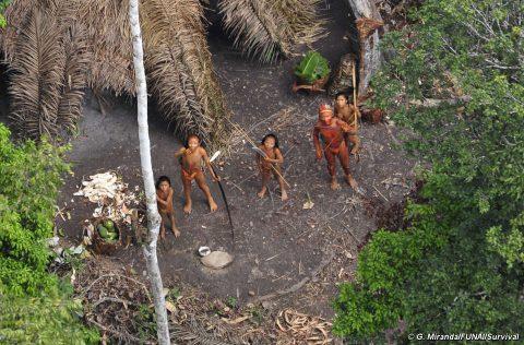 Esperti brasiliani criticano la proposta di contatto forzato delle tribù isolate