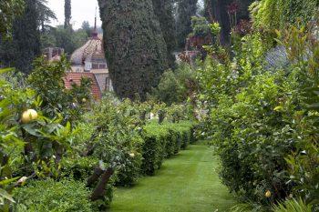 giardini-di-villa-della-pergola7_archivio-giardini-di-villa-della-pergola