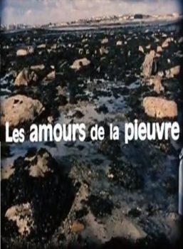 les-amours-de-la-pieuvre-di-jean-painleve-genevieve-hamon